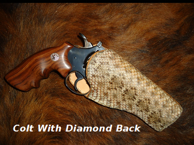 Colt Pistol With Diamond Back Rattler Holster